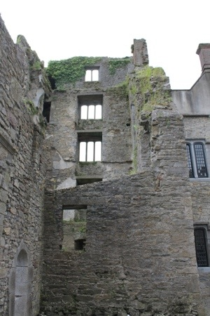 Ormond Castle :: Castle Ruin