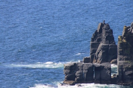 Cliffs of Moher :: North Side