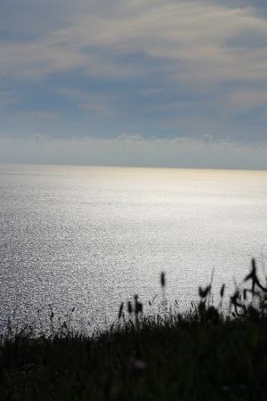 Cliffs of Moher :: The Atlantic Ocean