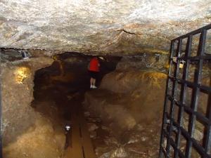 Blarney Castle :: Badger Caves