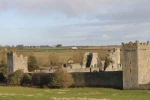 Kells Priory; see the numerous tower houses