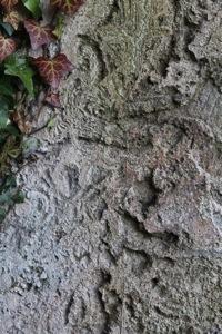 Molough Abbey :: More Plaster Work