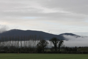 County Tipperary Countryside