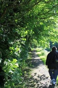 Fethard :: Walking along the River