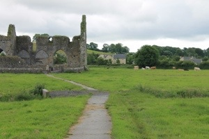 The path leading to Hore Abbey.