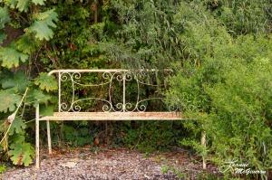 Rusty Bench Inviting