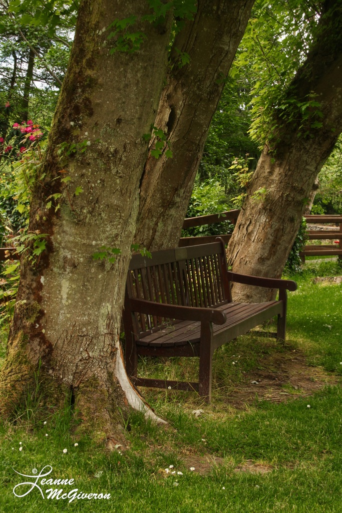 Join Me? Meeting of the Waters, Avoca, County Wicklow