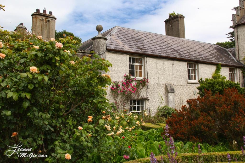 Behind Kilruddery House, Bray, County Wicklow