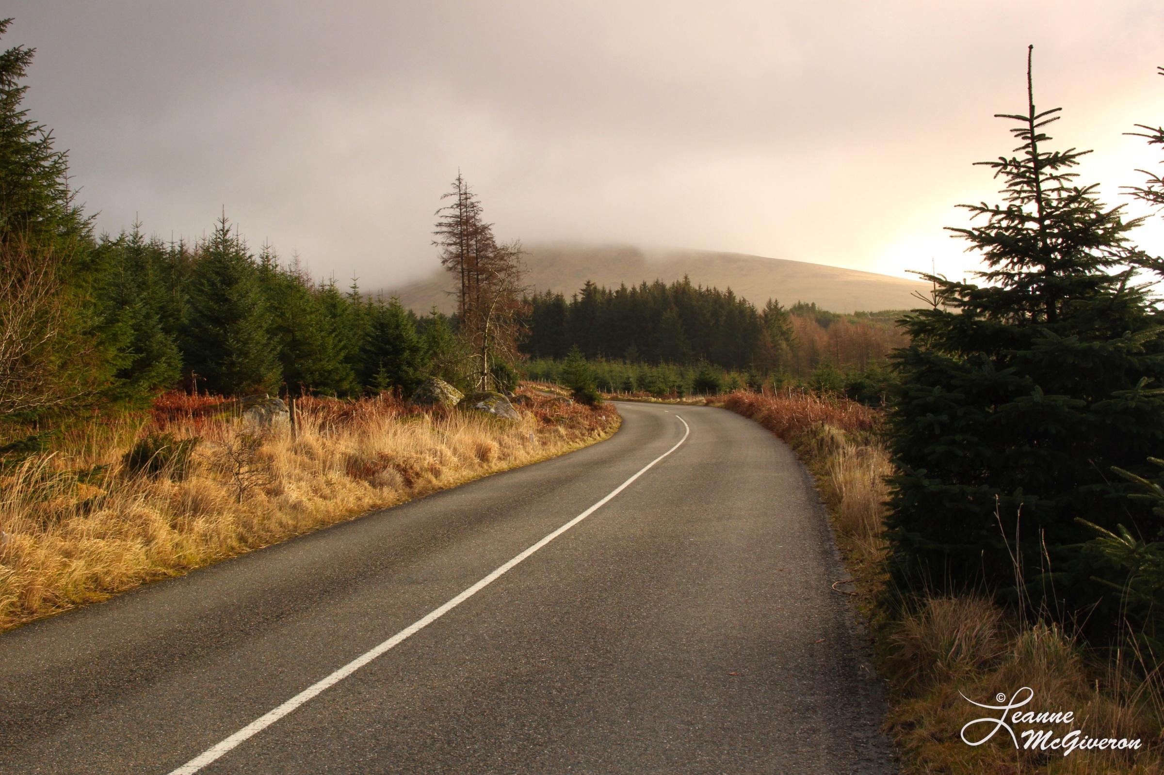 Along the Wicklow Gap, County Wicklow