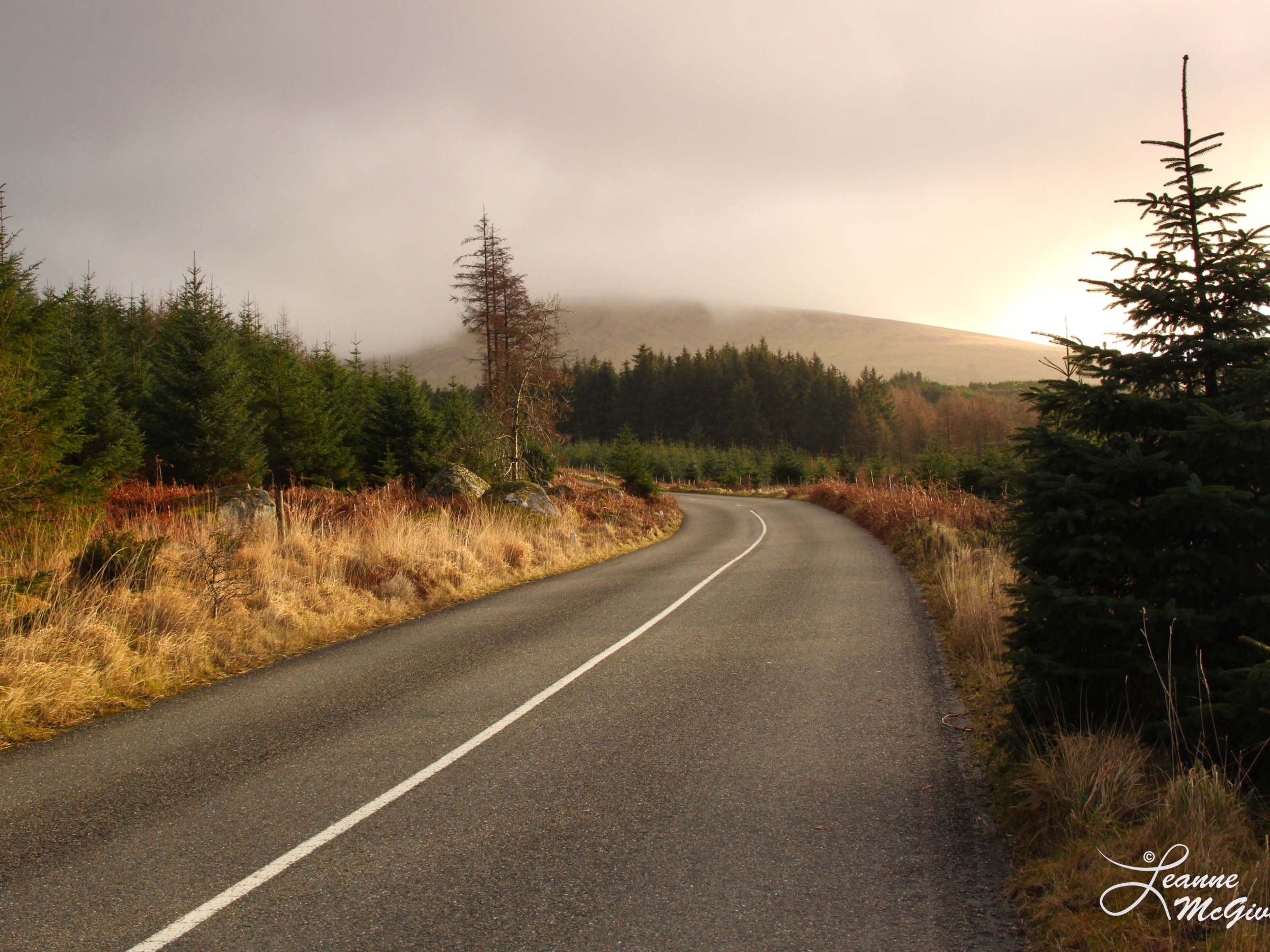 Along the Wicklow Gap, County Wicklow