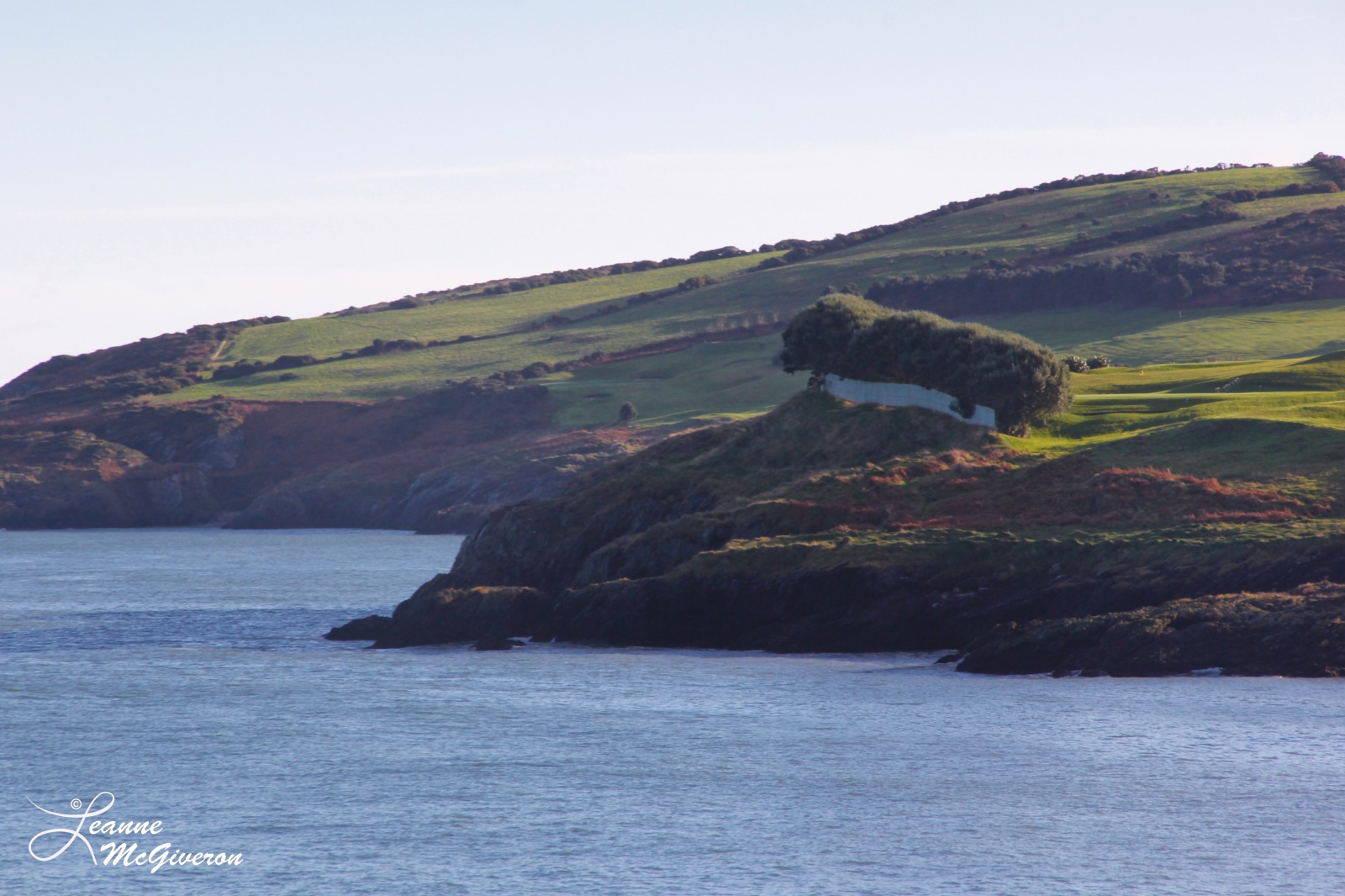 The Cottage Ruin, Wicklow, County Wicklow