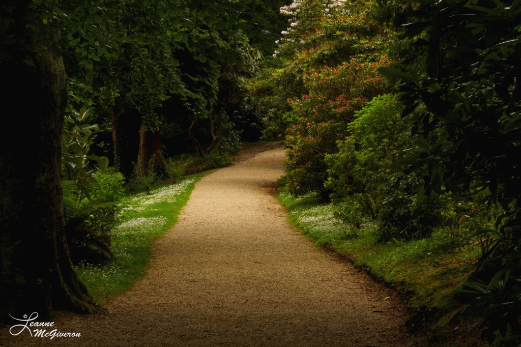 A Powerscourt Path