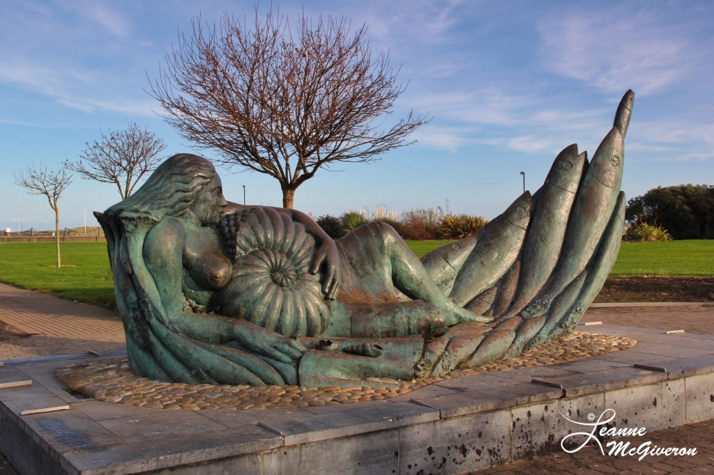 The Ammonite, Malahide, County Dublin