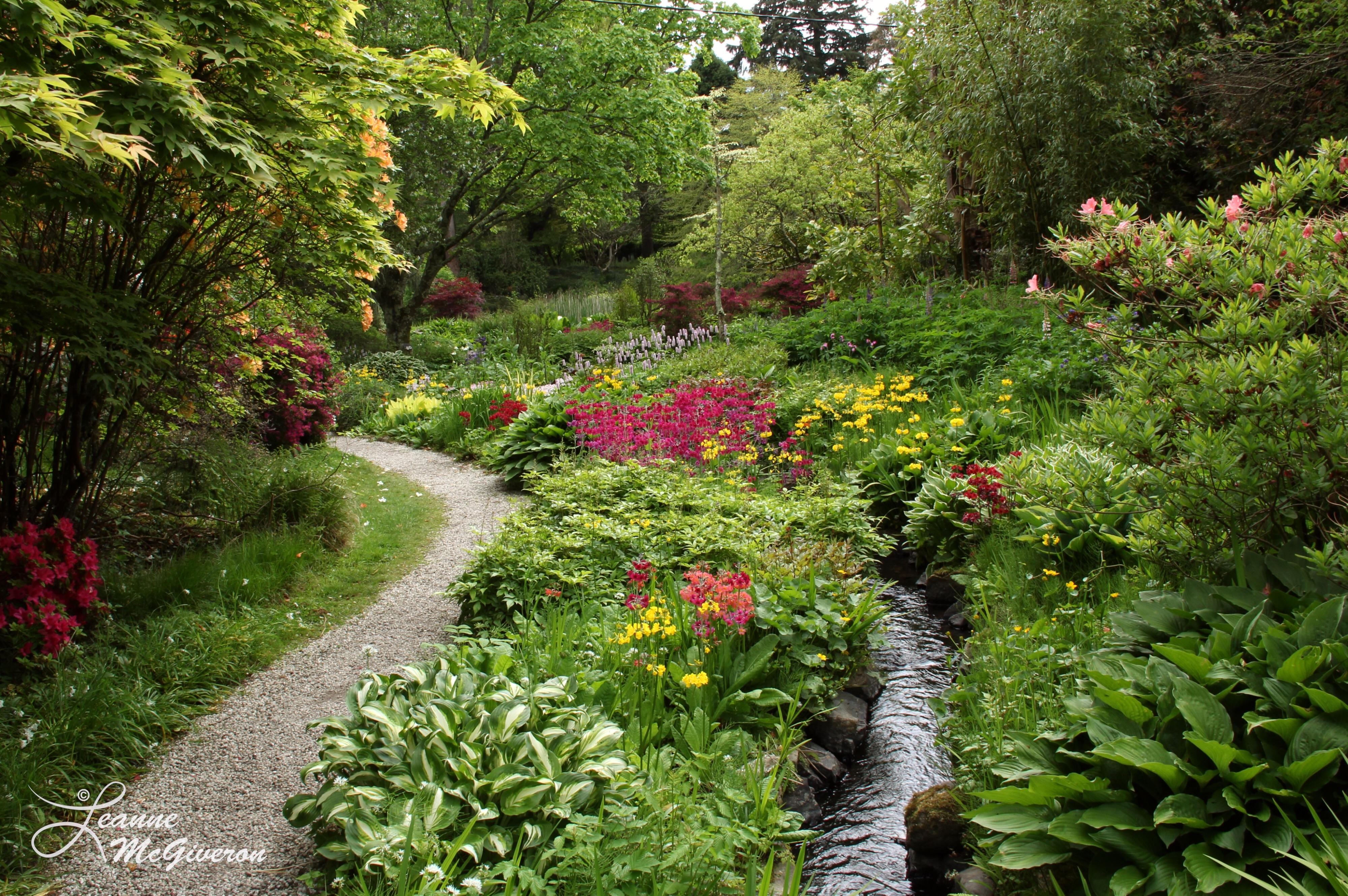 Follow the Creek, Mount Usher Gardens, County Wicklow