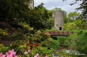 Blarney Castle, Blarney, County Cord