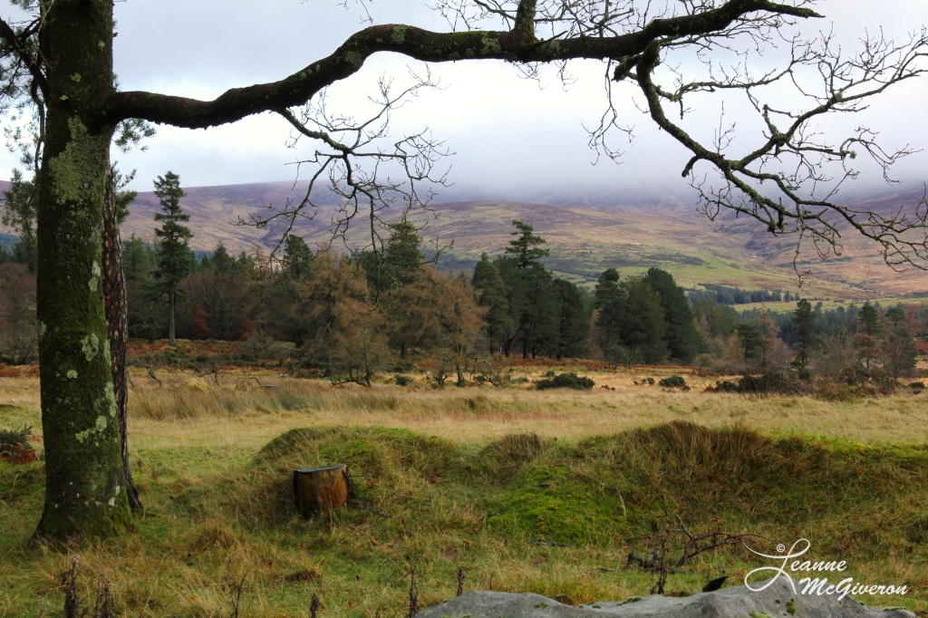 Glen of Imaal, County Wicklow