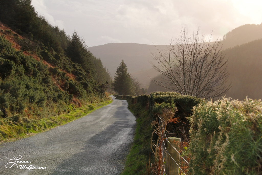 Military Road, County Wicklow