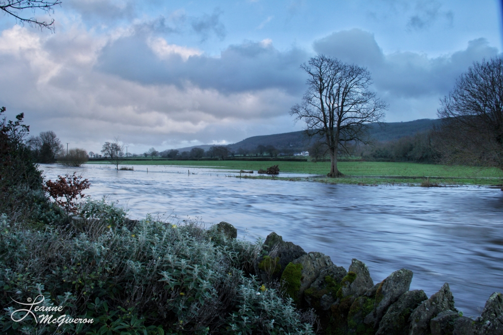 December Blues, River Suir, County Tipperary