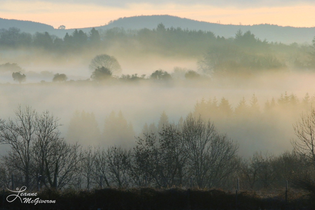 Morning Mist, Rathdrum, County Wicklow